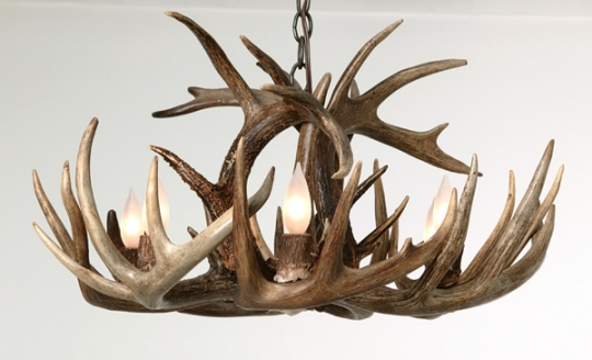 Whitetail Antler Single Tier Chandelier: Western Passion